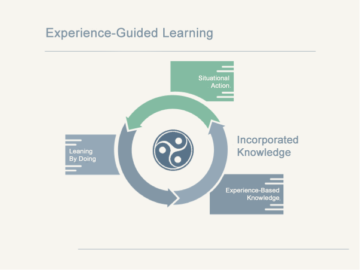 Experience-guided learning