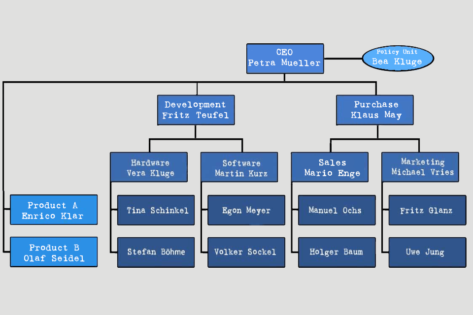 Organisation Chart - example with matrix organisation and policy unit