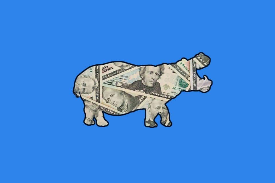 HIPPO effect as cognitive bias due to Highest Paid Person's Opinion