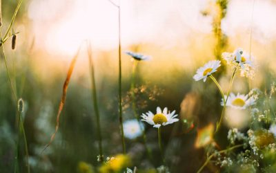 Tipps zu Spring Async – Teil 3