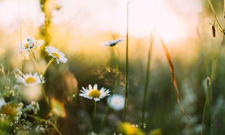 Tipps zu Spring Async – Teil 2