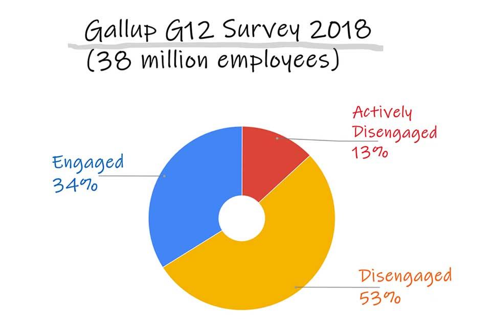 Gallup G12 Studie